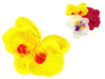 Główka kwiatowa STORCZYK x10 cm - 1 szt
