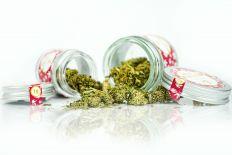 Kwiaty Konopi CBD (Extreme Diesel) 1 gram
