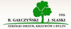 Szkółka drzew, krzewów i bylin. B. Gałczyński, J. Slaski