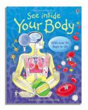 See Inside Your Body Usborne Lifttheflapbooks By Katie Daynes Colin King